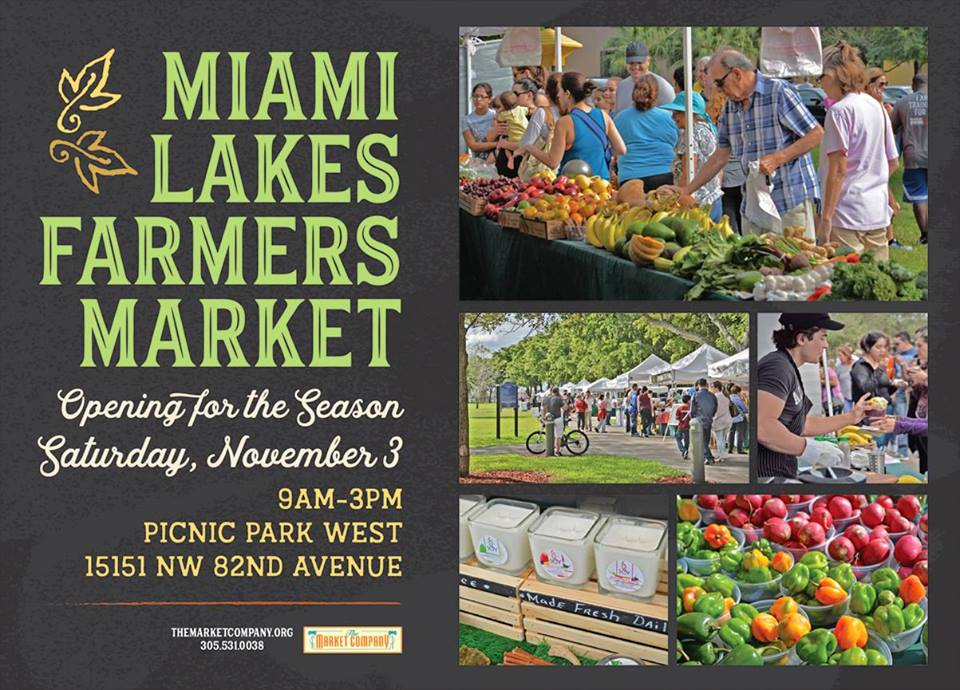 farmers-market-yoga-in-the-park-at-picnic-park-west