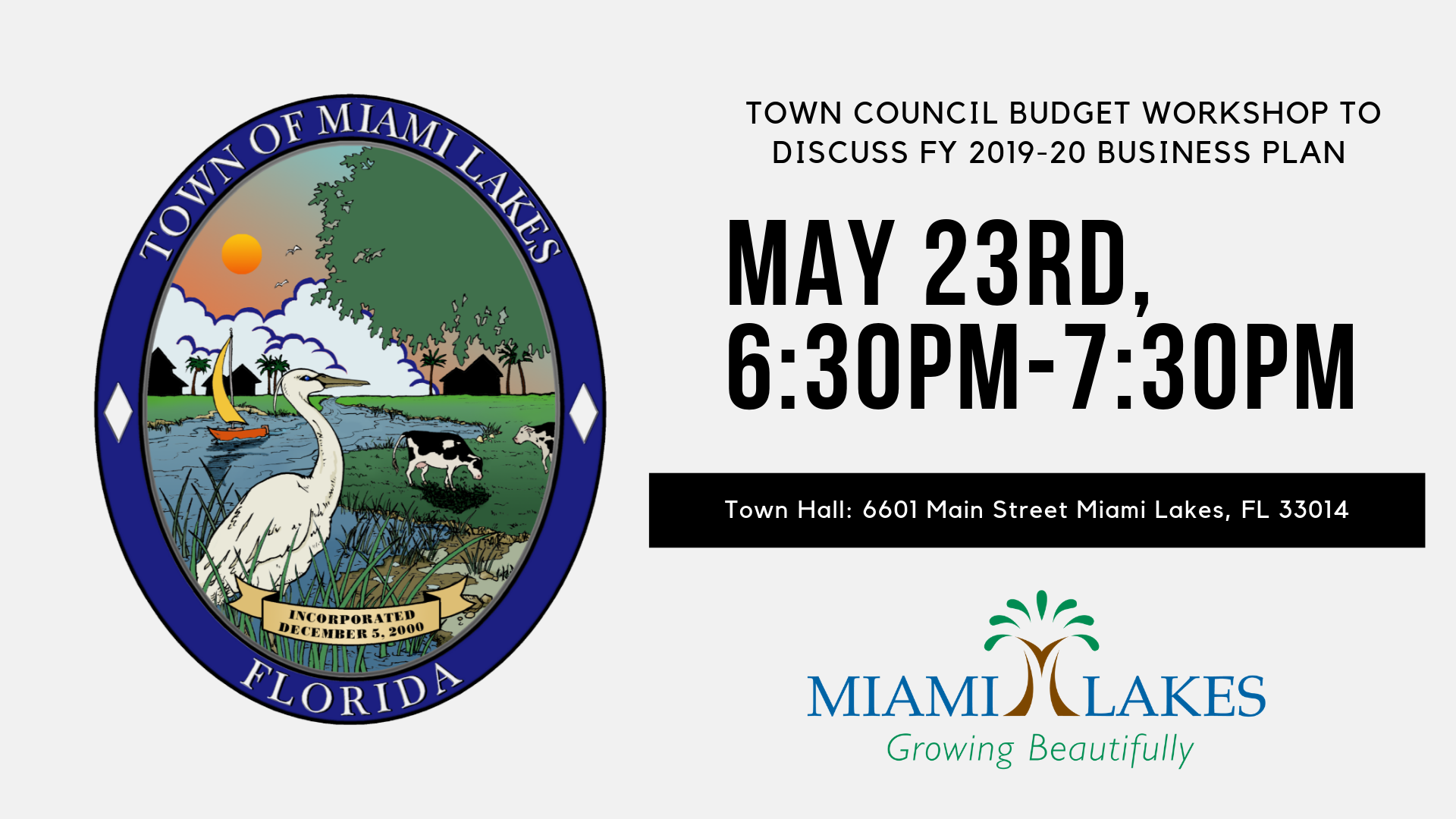 TOWN COUNCIL BUDGET WORKSHOP TO DISCUSS FY 2019 20 BUSINESS PLAN