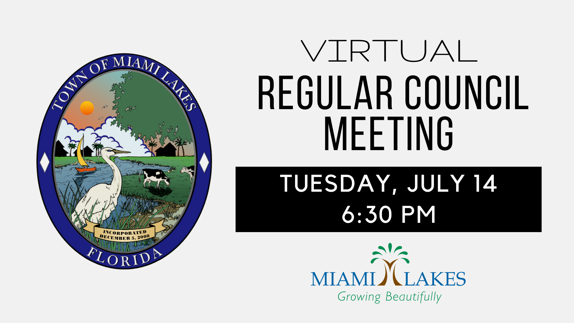 Virtual Regular Council Meeting 1